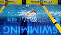 swimming<br /> 100 Freestyle Women<br /> FINA Airweave Swimming World Cup 2015<br /> Dubai U.A.E  2015  Nov.6 th - 7th3 rd<br /> Day2 - Nov. 7 th Heats<br /> Photo G. Scala/Deepbluemedia
