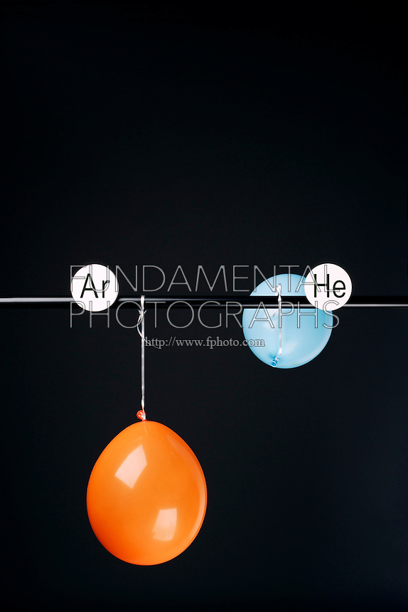 HELIUM AND ARGON FILLED BALLOONS<br /> (Variations Available)<br /> The Two Balloons Are Filled To The Same Volume<br /> After 11.5 hours the helium filled balloon is smaller than the Argon filled balloon. Helium effuses out of the balloon faster than Argon.  Light atoms or molecules effuse through the pores of the balloons faster than heavy atoms or molecules.