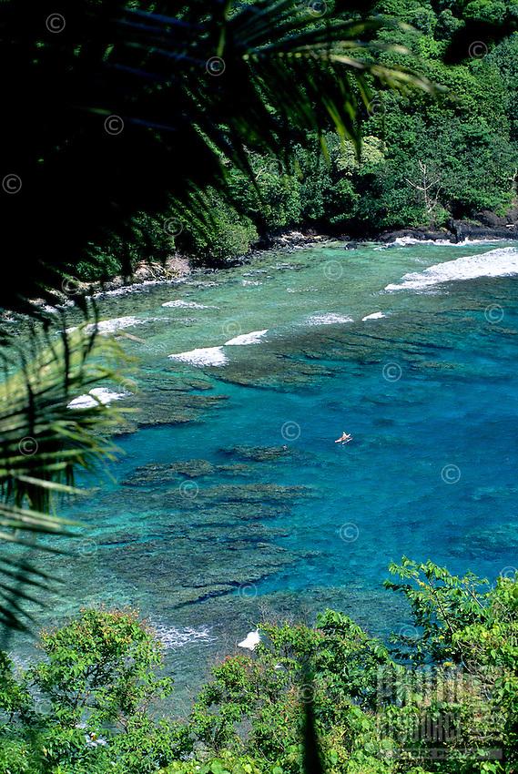 American Samoa; Tutuila, near Vatia.