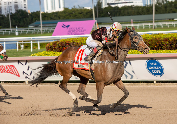 January 25, 2020: #11 Pink Sands with jockey Jose L Ortiz on board wins the Inside Information G2 Stakes during the Pegasus World Cup Invitational at Gulfstream Park Race Track in Hallandale Beach, Florida. Liz Lamont/Eclipse Sportswire/CSM