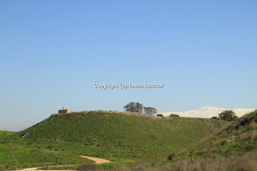 Israel, Upper Galilee, Tel Hazor, a World Heritage site