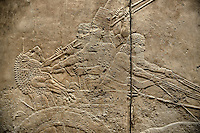 Assyrian relief sculpture panel of Ashurnasirpal stabbing his sword into a lions neck during a lion hunting.  From Nineveh  North Palace, Iraq,  668-627 B.C.  British Museum Assyrian  Archaeological exhibit no ME 124850