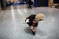 A girl ties her shoes before competition at the 2013 World Championships for Irish Dancing in Boston, Massachusetts, USA.  The 2013 competition in Boston is the second time in the competition's 43-year history that the event has been held in the United States.