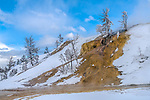 Yellowstone National Park, Wyoming:<br /> Mammoth Hot Springs lower terrace, winter