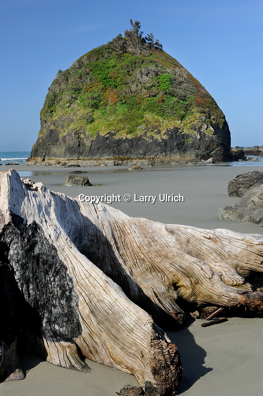 Houda Point Beach at minus tide<br />