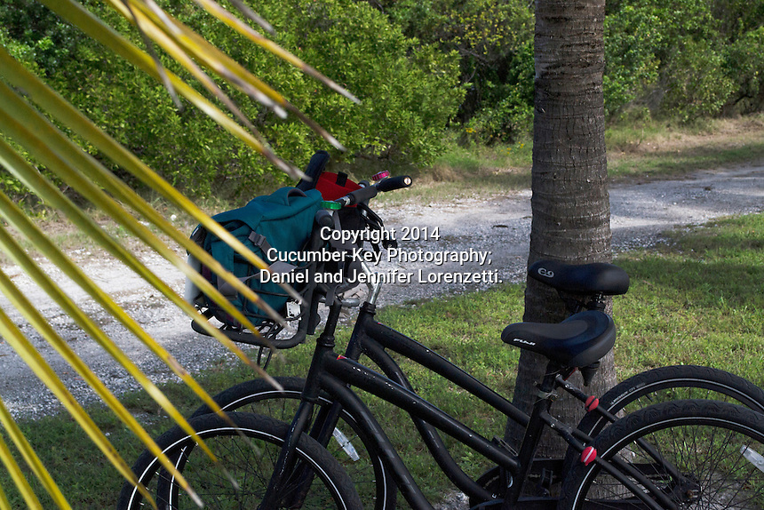 Key West is one of the most bicycle-friendly cities in the nation, with locals and tourists alike getting around the small island by pedal power.