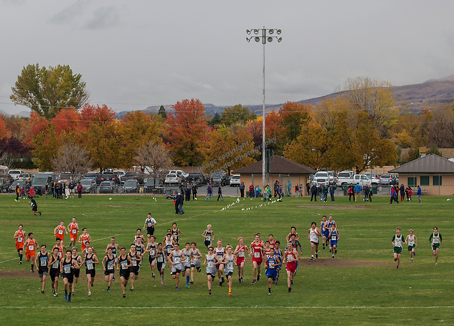 The start of the boys 2A/1A 5K during the Northern Nevada Regional Cross Country meet at Shadow Mountain Park on Friday, October 28, 2016.
