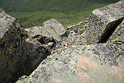 Looking down into Hellgate Ravine from the summit of Bondcliff  in the Pemigewasset Wilderness in the White Mountains, New Hampshire USA during the summer months.
