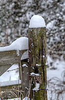 Old wooden fence posts covered with several inches of snow in rural Northwest Arkansas.