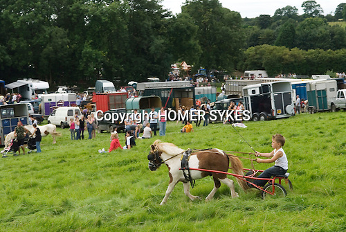 Priddy Horse Fair Somerset Uk 2009 Young boy trotting using a Sheltand Pony.