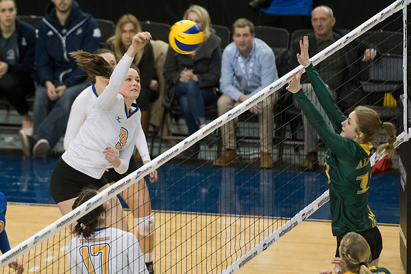 TORONTO,ON:MARCH 19, 2017 -- UBC Thunderbirds v University of Alberta Panada during the finals of the 2017 U Sports Women's Volleyball Championships at Ryerson University in Toronto, ON, March, 19, 2017. (Rich Lam/UBC Athletics Photo) <br /> <br /> ***MANDATORY CREDIT***