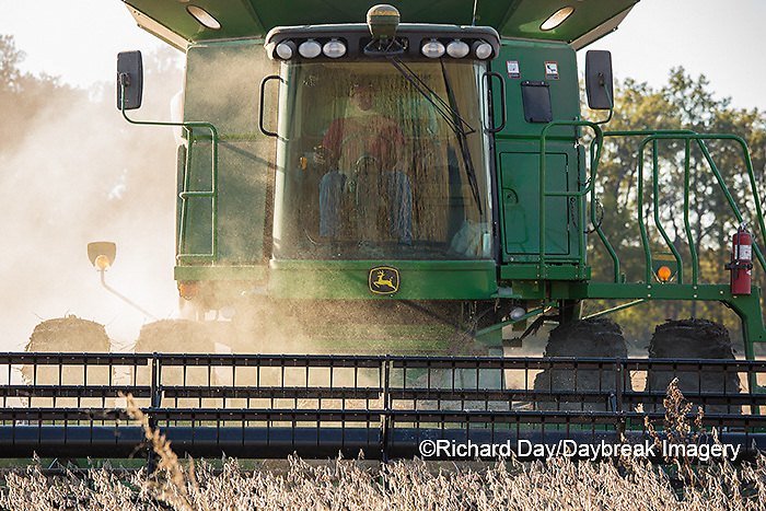 63801-07409 Soybean harvest with John Deere combine in Marion Co. IL