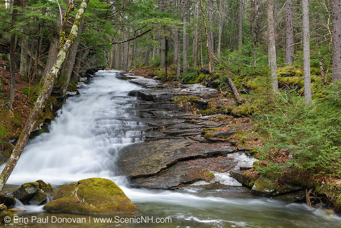 Dearth Brook Falls in Landaff, New Hampshire USA during the spring months. These falls are located on Dearth Brook on the side of the Cobble Hill Trail.