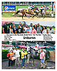 Stilburnin winning at Delaware Park on 7/29/17