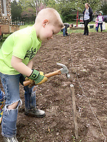 """Courtesy photo<br /> Abram Abernathy hammers a stake in the New Bethel """"Victory Garden"""" by the New Bethel School near Anderson. Abernathy is part of two home-school families who are working with organizer Karen Almeter to hoe, stake, pick rocks and plant the vegetable garden. Almeter decided to call the effort a """"Victory Garden,"""" which was part of a World War II campaign to feed the populace and the soldiers. Those who attend Saturday's New Bethel Heritage Festival will have the chance to enjoy the beginnings of the garden, along with various demonstrations, hand-crafted items for sale and a lunch by donation. Admission is free. All proceeds from the festival will help fund the schoolhouse's preservation."""