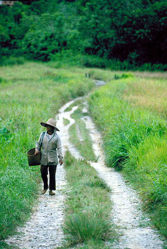 A young woman member of East Malaysia's Iban tribe walks down a dirt road. The Iban are the largest ethnic group in Sarawak. An Iban tribal woman. Kuching Sarawak East Malaysia backcountry road.