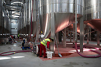 China - Ningxia - The fermentation room of Pigeon Hill Winery. <br />