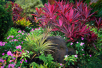 Red Ti plant (Cordyline Fruticosa) and pink impatiens flowers with Bromelliad at Na Aina Kai Botanical Gardens, Kauai, Hawaii