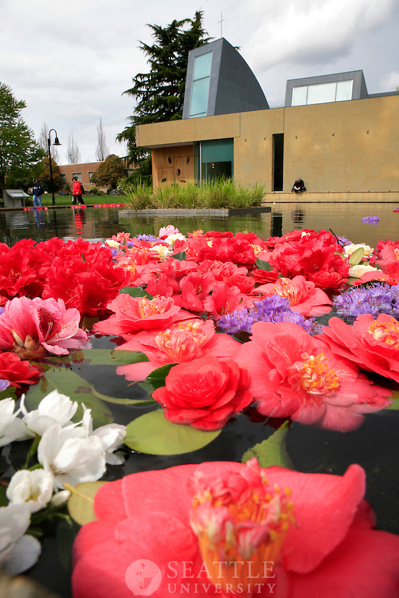 04122012-  Flowers in the Reflection Pool at the Chapel of St. Ignatius