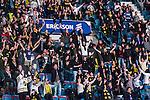 Stockholm 2014-01-18 Ishockey SHL AIK - F&auml;rjestads BK :  <br /> AIK supportrar jublar och sjunger under matchen<br /> (Foto: Kenta J&ouml;nsson) Nyckelord:  supporter fans publik supporters