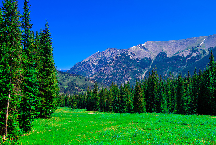 A Meadow On The Mountain At Copper Mountain Ski Resort In