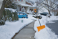 Neighborhood Snow Shovel, Lumberton, New Jersey