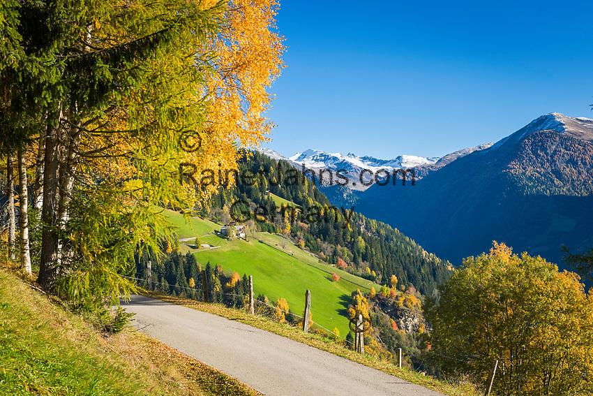 Oesterreich, Kaernten, Moelltal bei Winklern: Herbstlandschaft im Moelltal   Austria, Carinthia, Valley Moelltal near Winklern: autumn scenery at Valley Moelltal