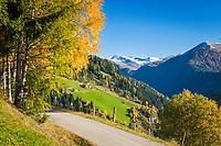 Oesterreich, Kaernten, Moelltal bei Winklern: Herbstlandschaft im Moelltal | Austria, Carinthia, Valley Moelltal near Winklern: autumn scenery at Valley Moelltal