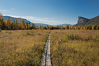 Wooden pathway with Mt. Skierfe in distance, near STF Aktse hut, Kungsleden trail, Lapland, Sweden