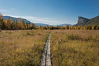 Wooden pathway with Mt. Skierfe in distance, near STF Aktse hut, Kungsleden trail, Lapland, Sweden