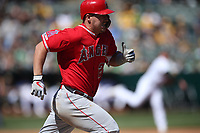 OAKLAND, CA - MARCH 31:  Mike Trout #27 of the Los Angeles Angels runs to first base against the Oakland Athletics during the game at the Oakland Coliseum on Sunday, March 31, 2019 in Oakland, California. (Photo by Brad Mangin)
