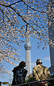 April 6, 2012, Tokyo, Japan ? An aged couple admires cherry blossoms and the clear view of Tokyo Sky Tree at a downtown park on Friday, April 6, 2012. It's springtime in Tokyo and time to stop and appreciate fragile pale pink blossoms in full bloom all over the nation's capital. Last year, Japan's most popular national passtime was somewhat muted due to the March 11 earthquake and tsunami. But this year, the centuries-old tradition has come back with revelers eager to use the occasion as a way to break from a year marked by the crisis and disaster. (Photo by Natsuki Sakai/AFLO) AYF -mis-
