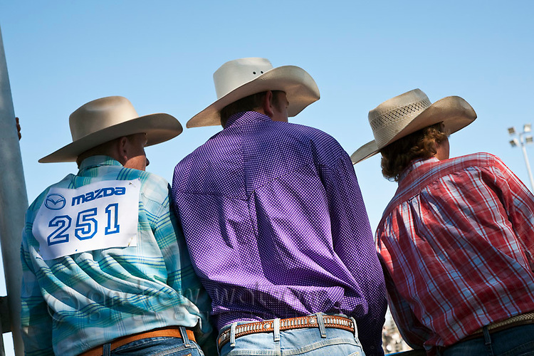Cowboys at the annual Mareeba Rodeo.  Mareeba, Queensland, Australia