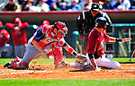 4 March 2010: Washington Nationals' catcher Wil Nieves gets Houston Astros catcher Jason Castro out at the plate during the Nationals-Astros Grapefruit League Opening game at Osceola County Stadium in Kissimmee, Florida. The Astros defeated the Nationals split-squad 15-5 in Spring Training action. Mandatory Credit: Ed Wolfstein Photo