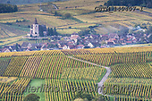 Tom Mackie, LANDSCAPES, LANDSCHAFTEN, PAISAJES, photos,+View over Village of Hunawihr, Alsace, France,Alsace, EU, Europa, Europe, European, France, Hunawihr, church, holiday destina+tion, horizontal, horizontals, lane, path, pathway, pathways, pathways & walls, pattern, patterns, road, roadway, tourism, tr+avel, vineyard, wine, winery++,GBTM140407-1,#l#, EVERYDAY