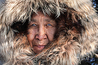 Bettles, Arctic Alaska 2006