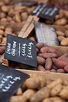 Europe/France/Nord-Pas-de-Calais/59/Nord/Dunkerque: Sur le marché étal de différentes espèces de pommes de terre