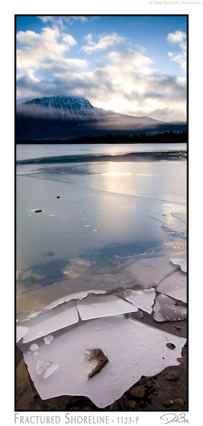 Early winter ice forms on Mendenhall Lake in Juneau, Alaska