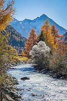 Austria, East-Tyrol, autumn scenery at Gschloess Valley near Matrei: mountain torrent Gschloessbach and High Tauern mountains | Oesterreich, Osttirol, Herbststimmung im Gschloesstal bei Matrei: der Gschloessbach bei Aussergschloess und Hohe Tauern