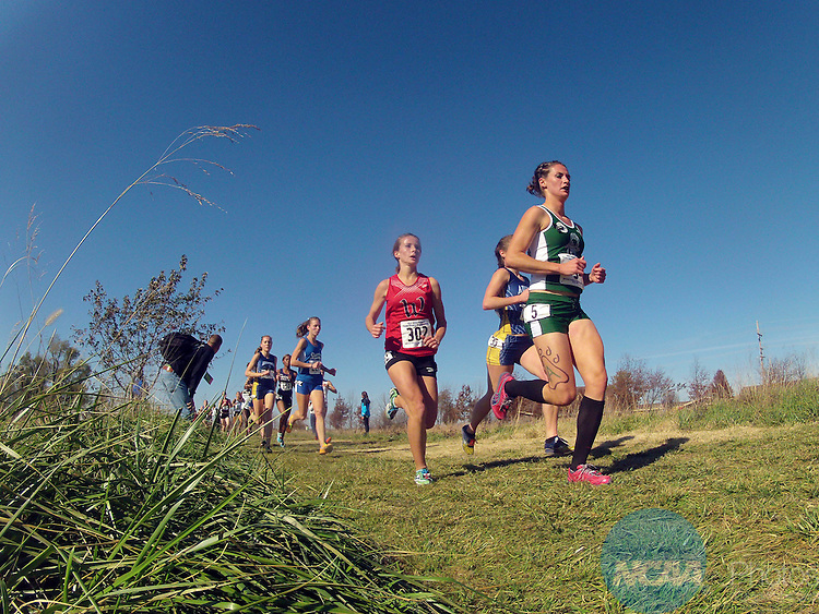 17 NOV 2012: First place finisher Alicia Nelson (5 in green) of Adams State races during the Division II Women's Cross Country Championship held at the Missouri Southern Cross Country Course in Joplin, MO.  Nelson won the national title with a 20:03.3 time.  Tom Ewart/ NCAA Photos