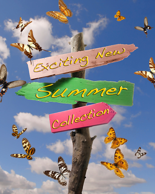 New Summer clothes collection