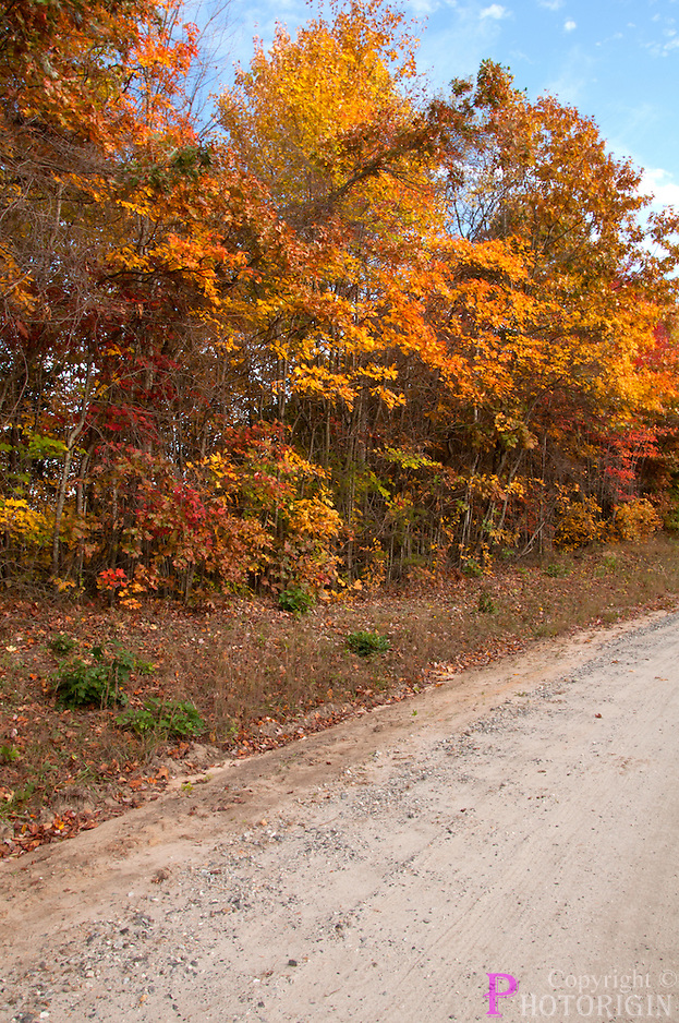 Beautiful fall color in a country road of brushy mountain not well known to public.
