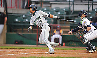 Burlington Bees shortstop Jose Garcia (15) swings at pitch against the Dayton Dragons at Community Field on May 2, 2018 in Burlington, Iowa.  (Dennis Hubbard/Four Seam Images)