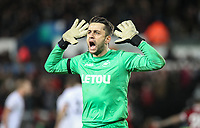 Goalkeeper Lukasz Fabianski of Swansea City  celebrates his teams win at full time during the Premier League match between Swansea City and Liverpool at the Liberty Stadium, Swansea, Wales on 22 January 2018. Photo by Mark Hawkins / PRiME Media Images.