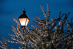 The lamps of Ohio University in early spring.  Photo by Ohio University / Jonathan Adams