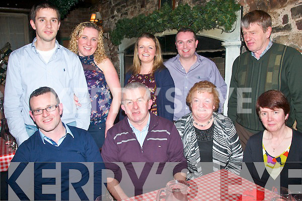 BIRTHDAY GREETINGS: Ted Fitzpatrick, Ballydesmond (seated 2nd left) celebrating his birthday last Saturday night in Finnegan's restaurant, Denny St, Tralee, pictured here with seated l-r: Thomas, Ted and Doreen Fitzpatrick with Sheila Clifford. Back l-r: Fergus McAulliffe, Lisa and Marguerita Fitzpatrick, David Healy and Sean Clifford.
