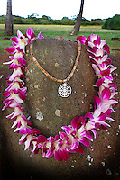 "Kukaniloko, a sacred place also known as ""The birthing stones,"" is located in Wahiawa, O'ahu."