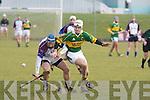 Kerry's Shane Brick (captain) and UL's Kieran Joyce.