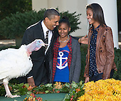 United States President Barack Obama, left, daughters Sasha, center, and Malia, right, participate in the annual White House ritual of granting a Presidential Pardon to the National Thanksgiving Turkey in the Rose Garden of the White House in Washington, D.C. on Wednesday, November 21, 2012.  This year's turkey, Cobbler, is 19-weeks old and weighs 40 pounds (18kg).  Cobbler, and his alternate, Gobbler, were named from submissions from elementary schools in Rockingham County, Virginia, where the turkeys were raised.  Following the pardoning ceremony, Cobbler and Gobbler will live out their lives at George Washington's Mount Vernon Estate and Gardens in Mount Vernon, Virginia.  .Credit: Ron Sachs / CNP