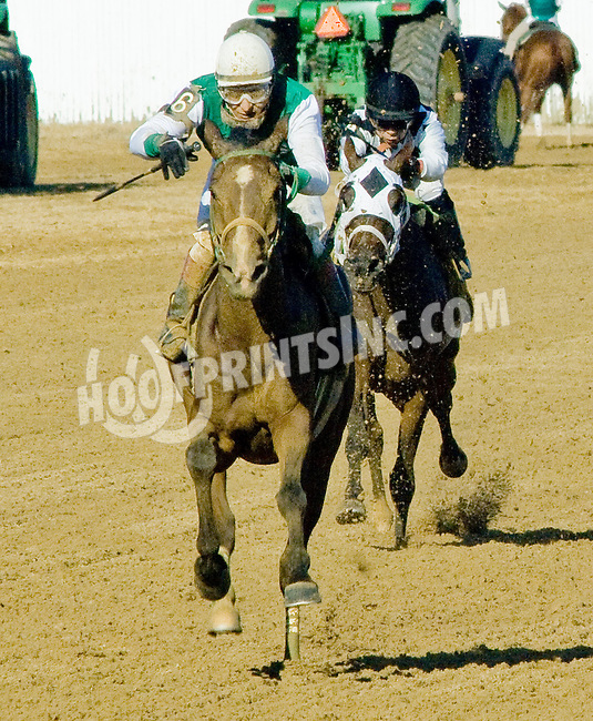 Explosive Heat MHF winning at Delaware Park on 9/12/12